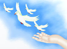 open-hand-releasing-freedom-bird-clear-blue-sky-26514496